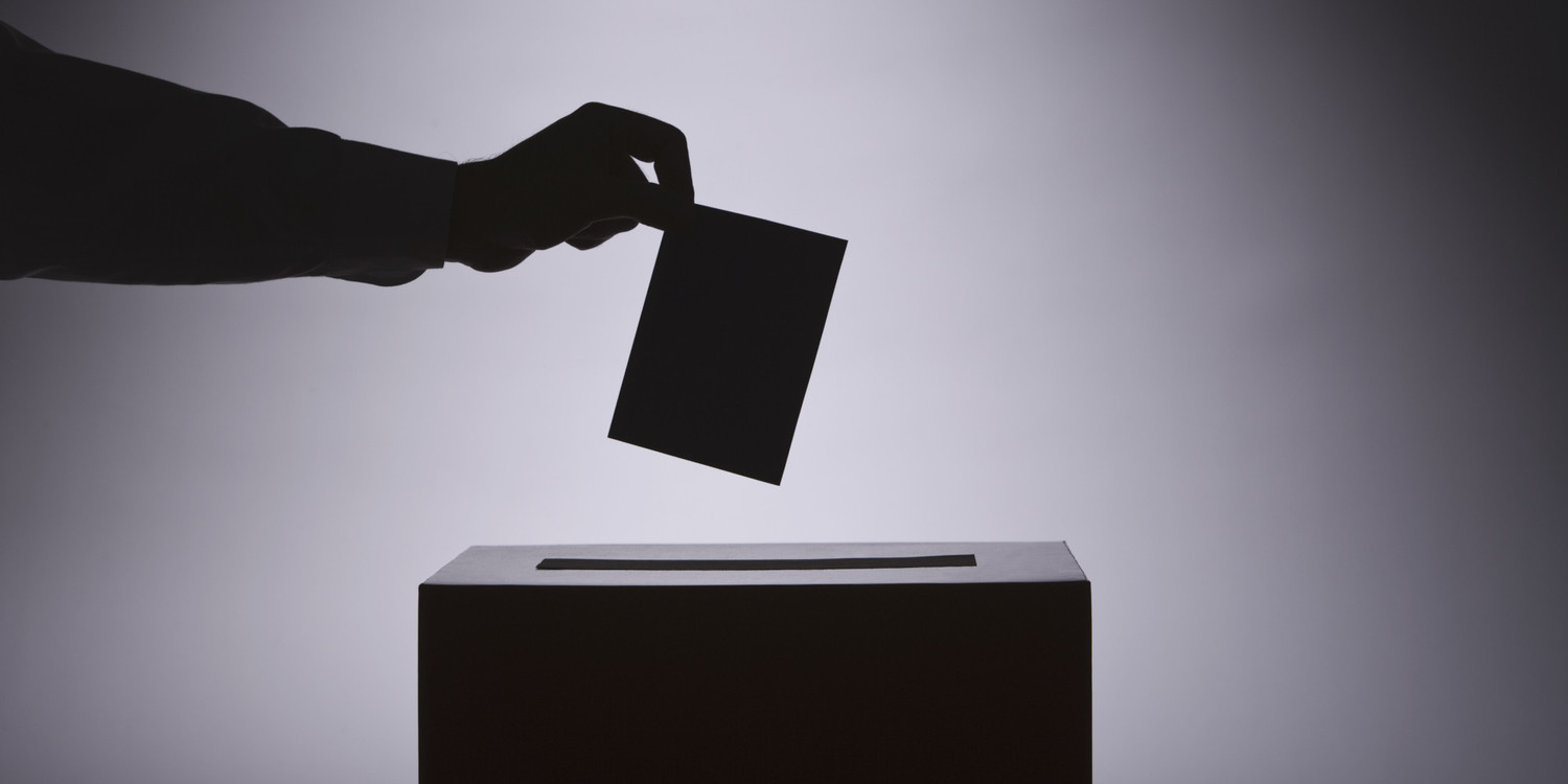 Person voting
